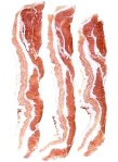 bacon ethics
